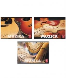 CAIET Muzica Pigna 16 FILE capsat 3/set