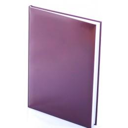 Agenda datata zilnica pentru 2019, dimensiune A5 , 15x21 cm, Pigna economic , culoare Bordo
