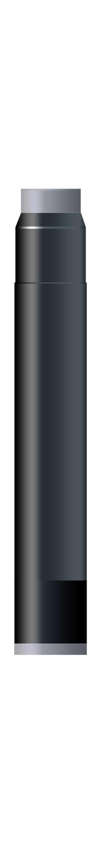 Intense Black permanent  Waterman Cartus Mini