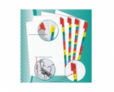 Separator plasstic EXXO - A4 12 culori (6*2 culori)
